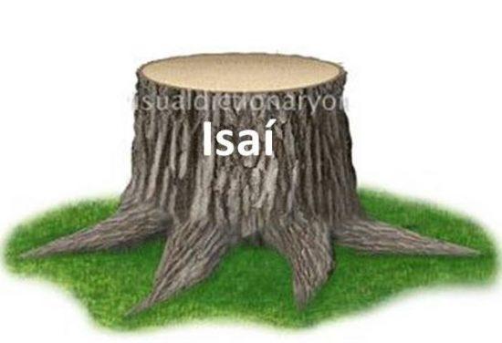 Dinastía representada como un tronco de Isaí – padre de David